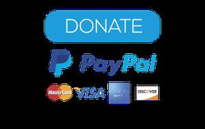 Donate to Earth Constitution Institute